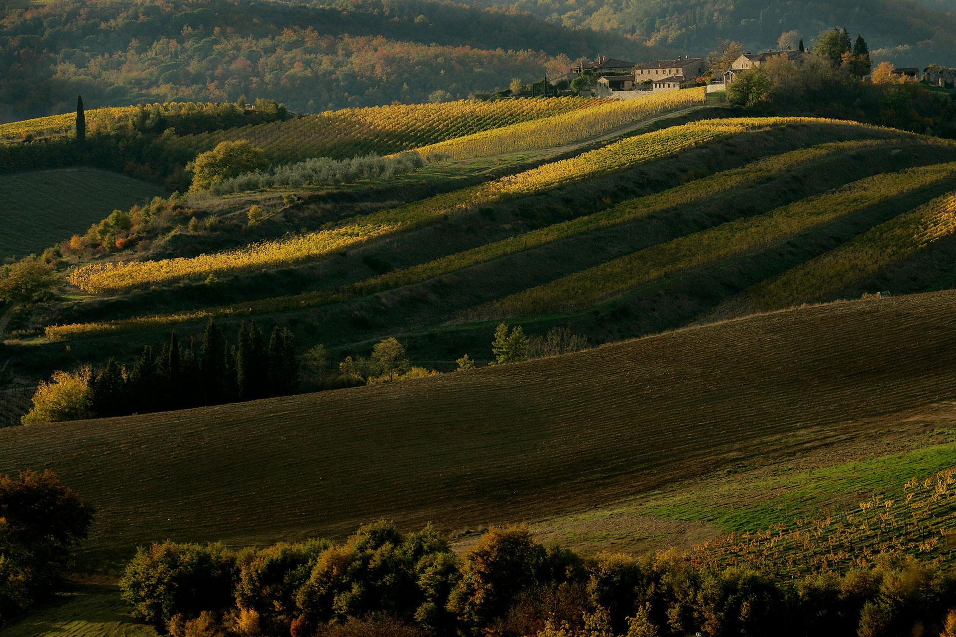 Eastern Part of Chianti Classico