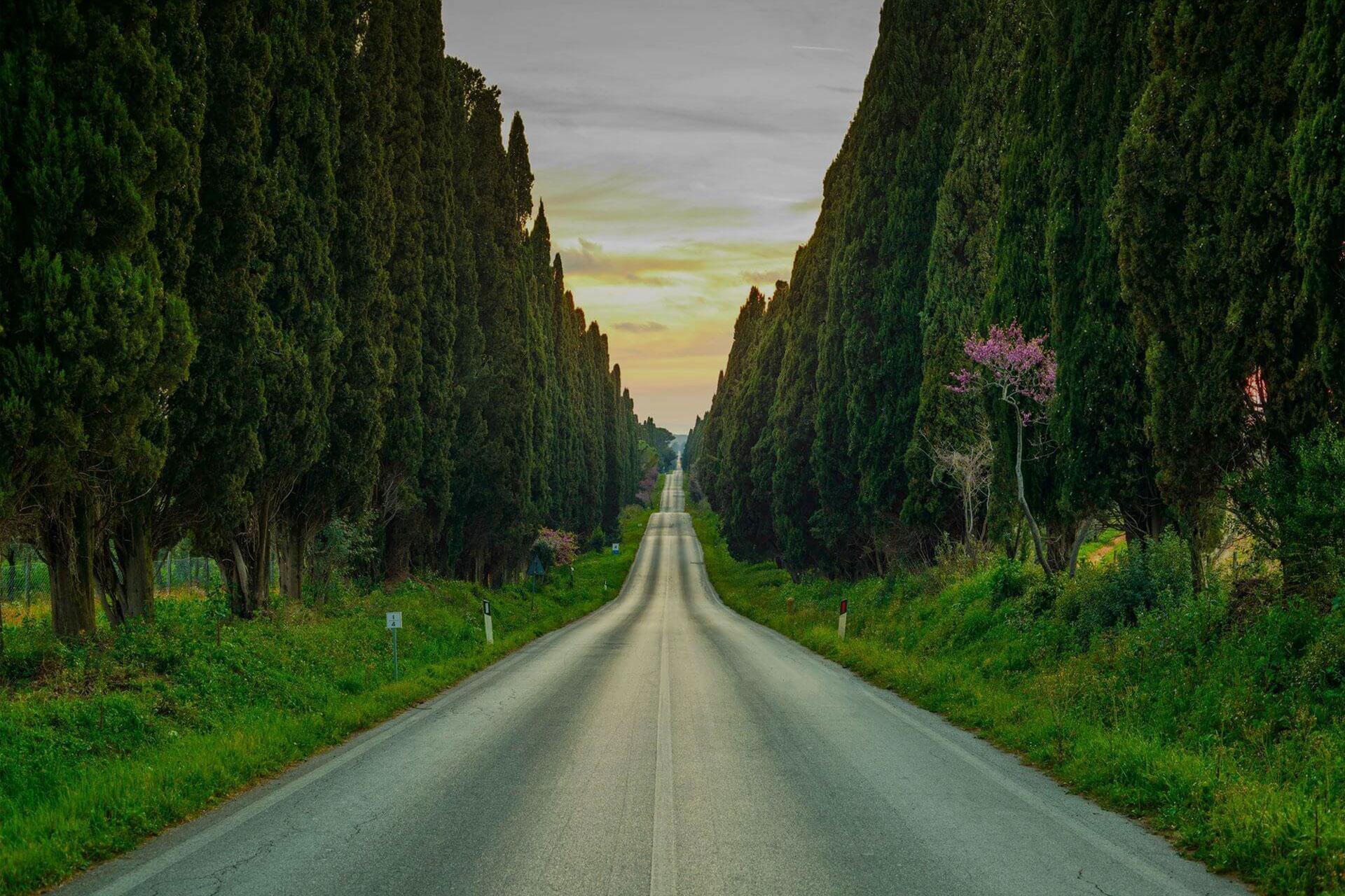 Tuscan Coast: Northern Part of Maremma